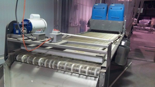 Berry Processing Line – 33in wide Complete Line