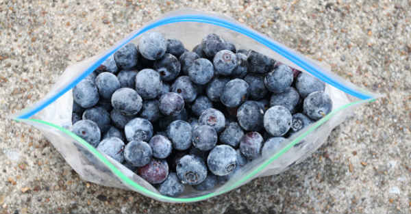 Reasons to Freeze Blueberries